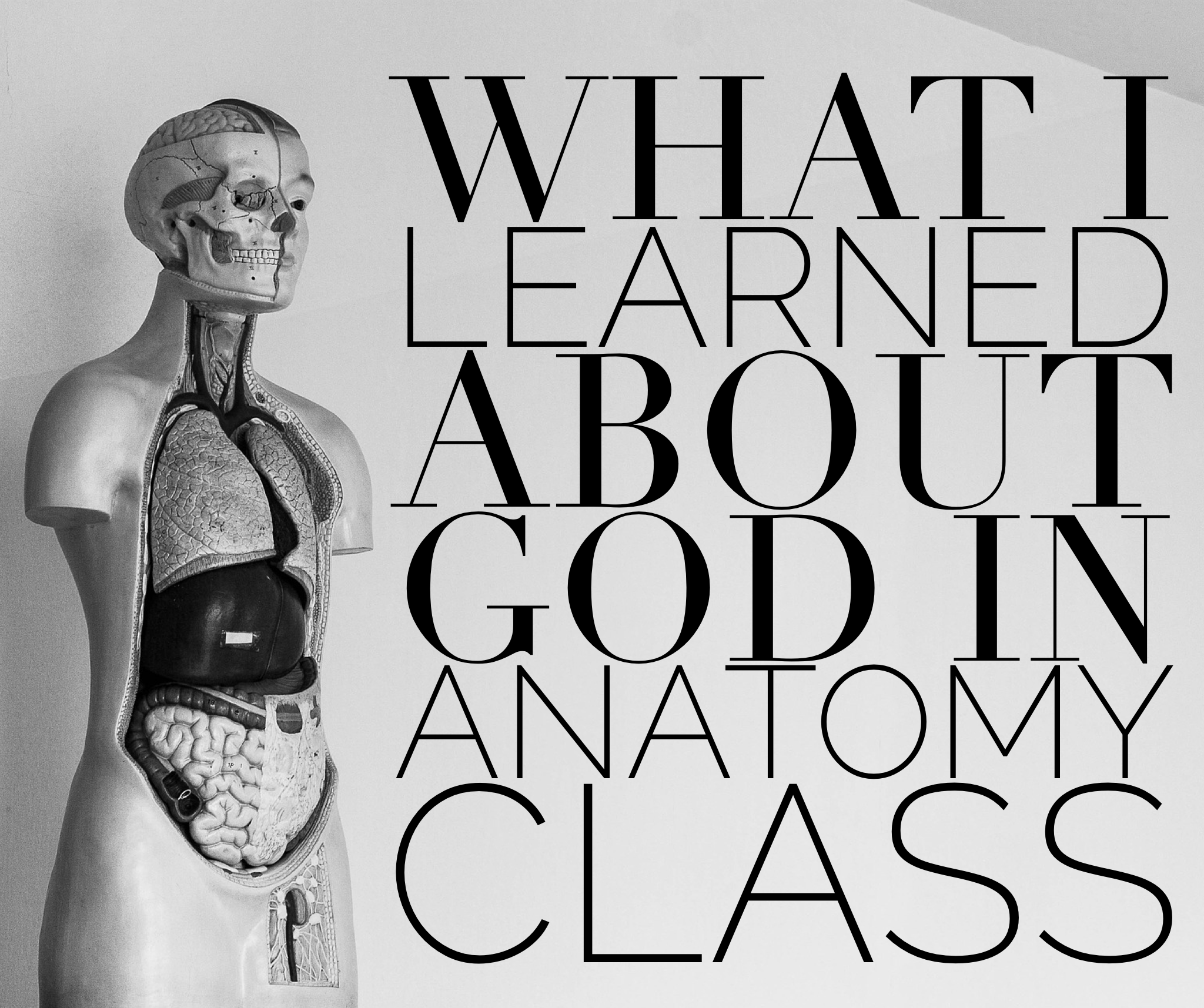 How My Anatomy Class Taught Me About God | Devotional Diva®