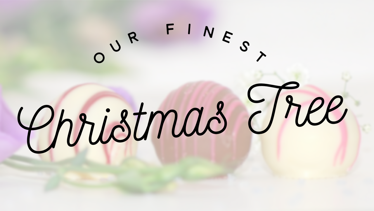 Our Finest Christmas Tree: Short and Sweet Christmas Devotionals