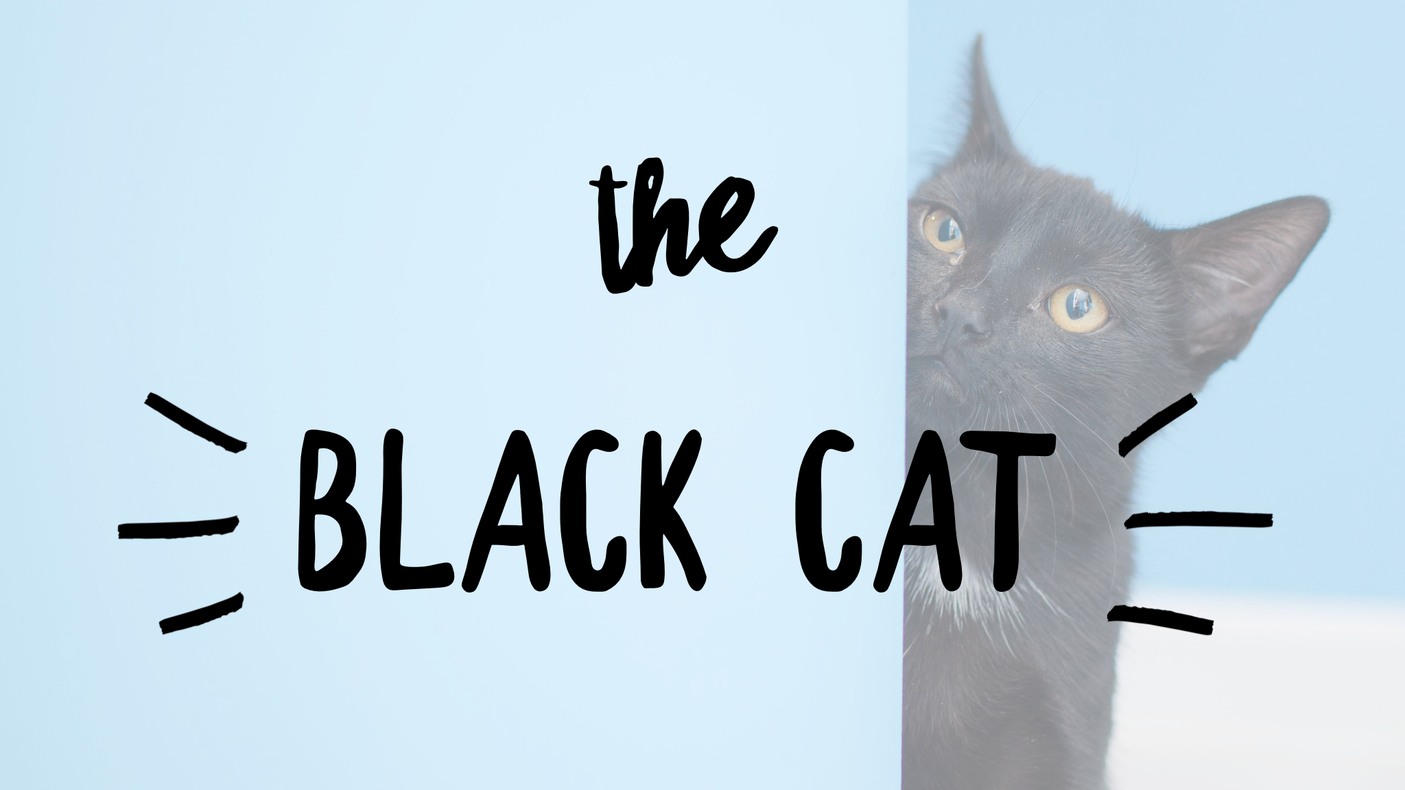 The Black Cat: Scripture vs Superstitions